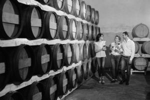 The Vinum organic family winery