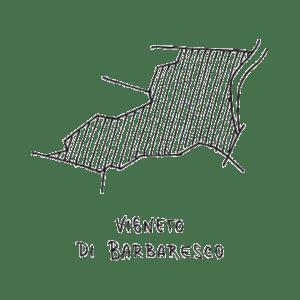 Barbaresco-vigneto