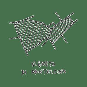 Montalcino-vigneto